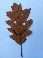 foto-herfst