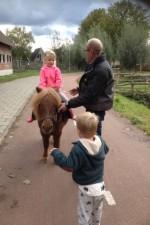 pony-en-spr